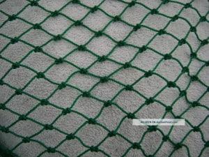 fish net 1
