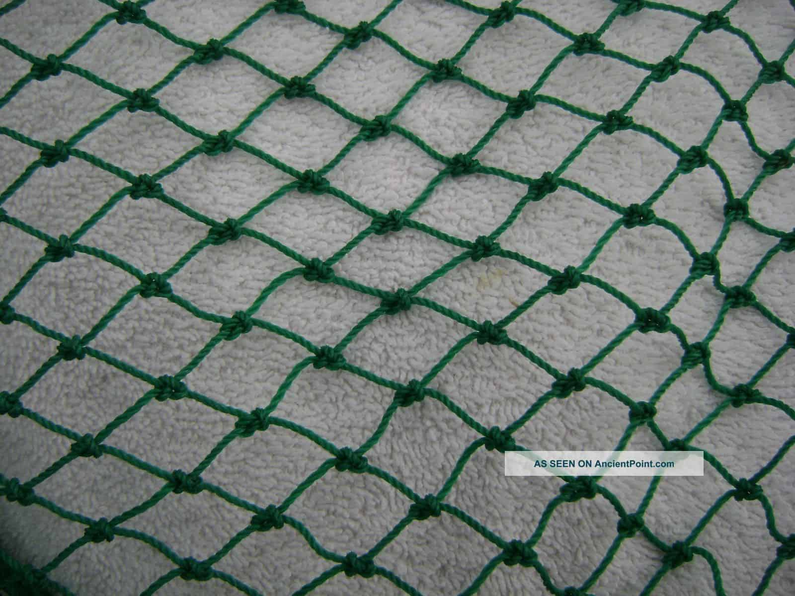 Tips on how to catch and release fish bc fishn for Small fishing net
