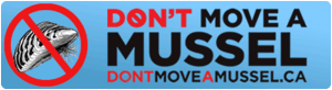 Dont' Move a Mussel