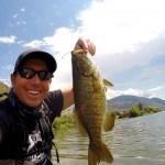 Shore Fishing for Bass