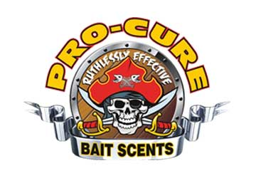 procure-banner
